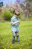Boy in grass outside picking flowers. Happy five year old boy standing in green grass outside picking yellow dandelions royalty free stock images