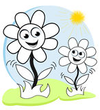 Happy flowers in the sun Royalty Free Stock Photos