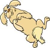 Happy fluffy dog cartoon illustration Stock Images