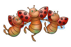 Happy flying ladybug. The three happy ledybugs are flying very high Royalty Free Stock Photos