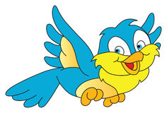 Happy Flying Sparrow Stock Images