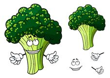 Happy fresh cartoon broccoli giving a thumbs up Royalty Free Stock Photos