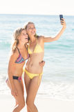 Happy friend doing selfie with smartphone Royalty Free Stock Image