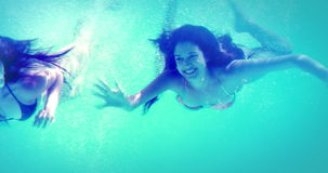 Happy friends in bikinis diving into swimming pool. On her holidays stock video footage