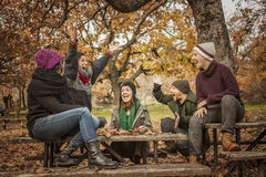 Happy friends conversating and throwing up leaves at the park Royalty Free Stock Images
