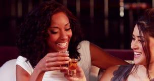 Happy friends drinking shot. In nightclub stock video