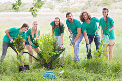 Happy friends gardening for the community. On a sunny day stock photo
