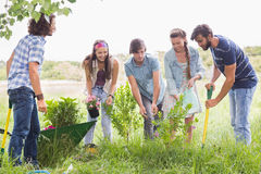 Happy friends gardening for the community. On a sunny day royalty free stock image