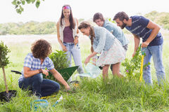 Happy friends gardening for the community Stock Photo