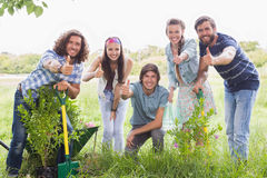 Happy friends gardening for the community. On a sunny day stock photos