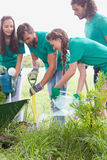 Happy friends gardening for the community. On a sunny day royalty free stock images