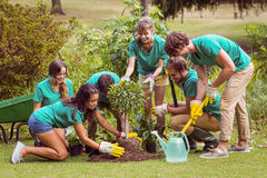 Happy friends gardening for the community Royalty Free Stock Photos