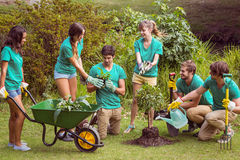 Happy friends gardening for the community. On a sunny day stock photography