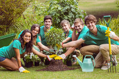 Happy friends gardening for the community Stock Images