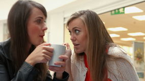 Happy friends having coffee together and gossiping. In high quality format stock footage