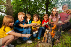 Happy friends near bonfire with marshmallow Royalty Free Stock Images
