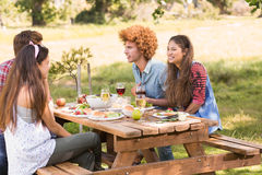 Happy friends in the park having barbecue Stock Photography