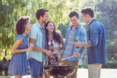 Happy friends in the park having barbecue Royalty Free Stock Images