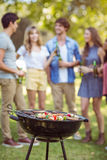 Happy friends in the park having barbecue Royalty Free Stock Photo