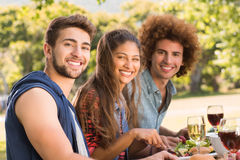 Happy friends in the park having lunch Stock Image