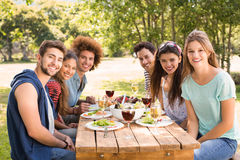 Happy friends in the park having lunch Stock Photography