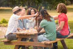 Happy friends in the park having lunch Stock Images