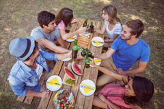 Happy friends in the park having picnic Royalty Free Stock Image
