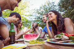 Happy friends in the park having picnic Stock Image