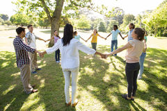 Happy friends in the park holding hands Royalty Free Stock Photography