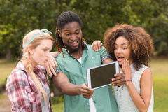 Happy friends in the park taking selfie Royalty Free Stock Images