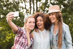 Happy friends in the park taking selfie Royalty Free Stock Image