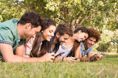 Happy friends in the park using their phones Stock Images