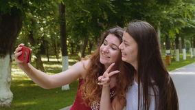 Happy friends taking selfie with the smartphone in the park stock footage