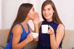 Happy friends talking, drinking coffee and tea. Happy friends talking and drinking coffee and tea sitting on a couch at home and gossiping Royalty Free Stock Photos