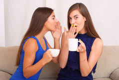 Happy friends talking, drinking coffee and tea. Happy friends talking and drinking coffee and tea sitting on a couch at home and gossiping Royalty Free Stock Image