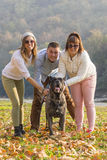 Happy friends and their Cane Corso dog Stock Image