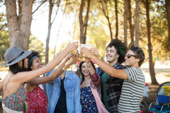 Happy friends toasting beer glasses at campsite Stock Images