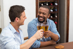 Happy friends toasting beer glasses Stock Photos