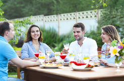 Happy friends toasting wine glasses in the garden while having l Stock Photos
