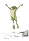 Happy frog Royalty Free Stock Photo