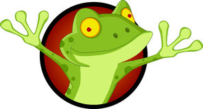 Happy frog cartoon Royalty Free Stock Photography