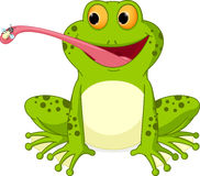 Happy frog cartoon catching fly Royalty Free Stock Photo