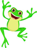 Happy Frog cartoon jumping Stock Images