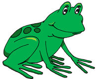 Happy Frog Royalty Free Stock Photography