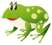 Happy frog on white background. Illustration Stock Image