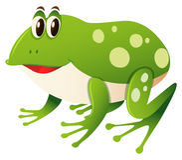 Happy frog on white background Stock Image