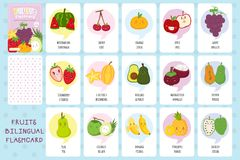 Happy Fruits Flashcards Vector Collection. Fruits flashcard, bilingual English Indonesian language flashcard vector template. Printable flashcard design for kids vector illustration