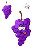Happy funny bunch of fresh purple grapes Stock Image