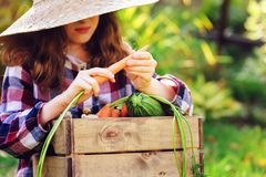 Happy funny child girl in farmer hat and shirt playing and picking autumn vegetable harvest royalty free stock photos