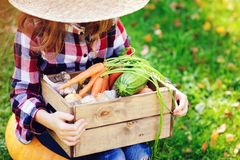 Happy funny child girl in farmer hat and shirt playing and picking autumn vegetable harvest. In sunny garden. Growing organic carrots and pumpkins Stock Photos